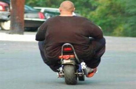Bike%20Fattie.jpg