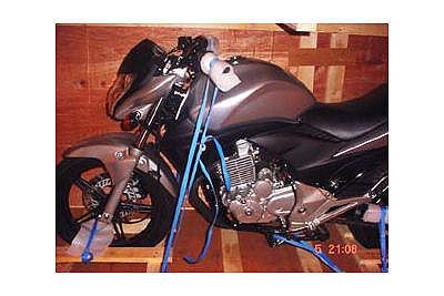 Hornet_250 2009.jpg
